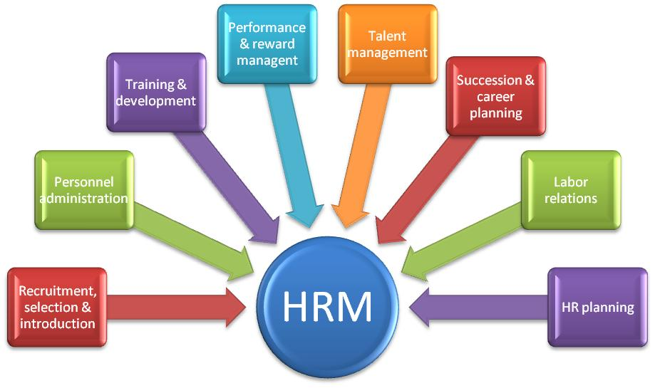 Organizational performance, turnover, and human resource