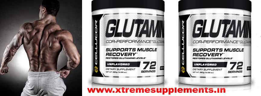CELLUCOR GLUTAMINE PRICE INDIA