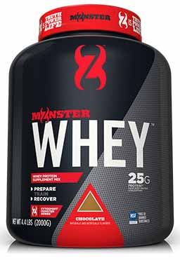 CYTOSPORTS MONSTER WHEY INDIA PRICE