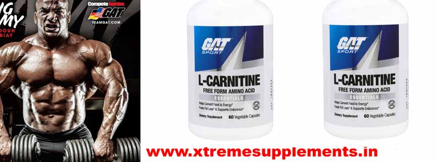 GAT L-CARNITINE PRICE  INDIA