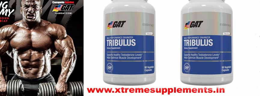 GAT TRIBULUS PRICE INDIA
