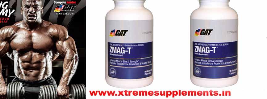 GAT ZMAG-T PRICE INDIA