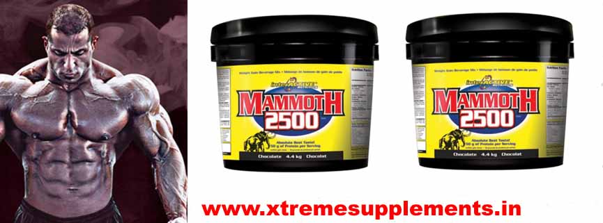 INTERACTIVE NUTRITION MAMMOTH 2500 4.4 KG