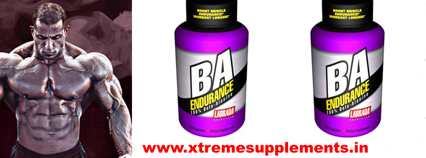 LABRADA BA ENDURANCE PRICE INDIA