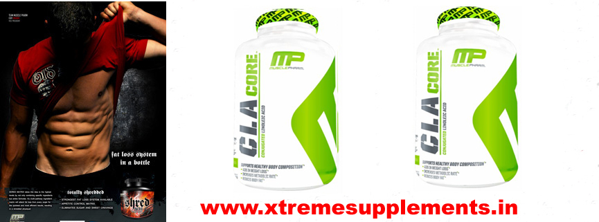MUSCLEPHARM CLA CORE PRICE INDIA