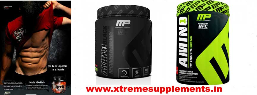 MUSCLEPHARM AMINO 1 PRICE INDIA