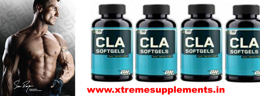 OPTIMUM NUTRITION CLA PRICE DELHI,OPTIMUM NUTRITION CLA PRICE INDIA