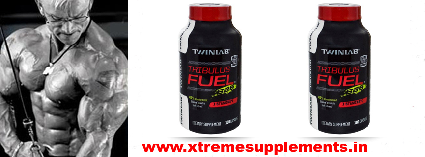 TWINLAB TRIBULUS FUEL PRICE DELHI,TWINLAB TRIBULUS FUEL PRICE INDIA
